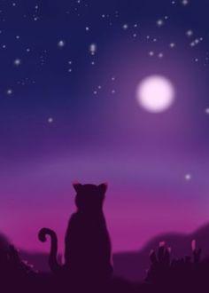 Cat Background, Vector Design, Northern Lights, Sky, Celestial, Landscape, Eyes, Night, Metal