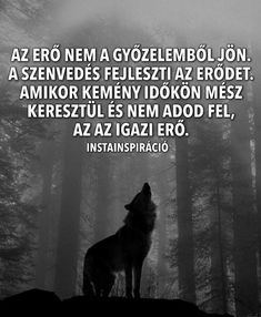 Az erő...az IGAZI ERŐ...♡ Lyric Quotes, Motivational Quotes, Lyrics, Inspirational Quotes, Learning Quotes, Love Life, Picture Quotes, Quotations, Wisdom