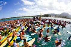 A few hundred surfers gathered for a tribute paddle-out to celebrate the life of American professional surfer Andy Irons. Surrounded by family, friends and the Hawaiian surf community, Irons brother and wife scattered the ashes of the award-winning surfer.