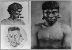 [Brazil. 3 Botocudos Indian men with large ear and mouth rings]