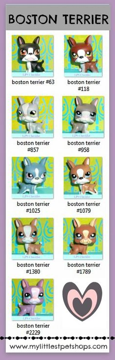 and Boston terrier Lps Dog, Lps Pets, Little Pet Shop, Little Pets, Lps Littlest Pet Shop, Group Of Dogs, Cute Toys, Toy Store, My Childhood