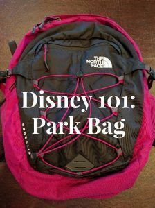 Disney 101: Park Bag. Packing a Disney park bag is important for your days at the parks. See what essentials should be in your park bag.