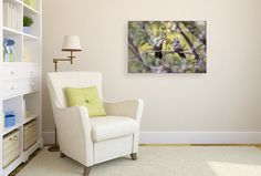 Fine Art Nature Photography Print on CANVAS Mother and Baby Hummingbird Photo Perfect Mother's Day Gift for Mom Grey Yellow Green Wall Decor Ready to Hang 8x10 8x12 11x14 12x18 16x20 16x24 20x30