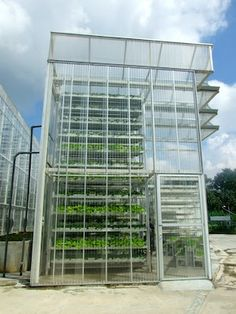 Urban Growth: Singapore's First Commercial Vertical Farm sky greens