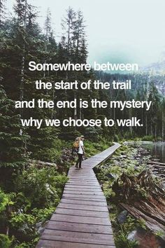 To find the mystery, you must walk the trail. trail quotes hiking, hiking tips for beginners, camping tricks and tips Hiking Quotes, Travel Quotes, Quotes About Hiking, Trekking Quotes, Citation Nature, Just Keep Walking, Couple Travel, Mountain Quotes, The Mountains Are Calling