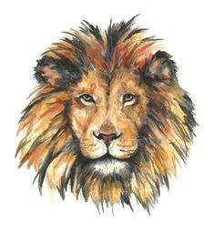 Lion watercolor print Lion watercolor painting by hgrahamandco