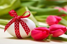 Easter Egg - lovely, egg, red, Easter, tulip, bow, beautiful, red tulip