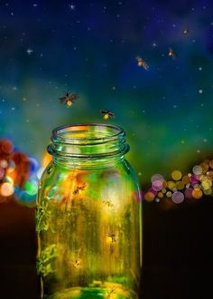 Fireflies on a summer night.