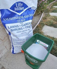 A quick way to get your grass green and lush - Ammonium Sulfate (don't use during drought, too much stress on grass).  Water well the first two nights after application.