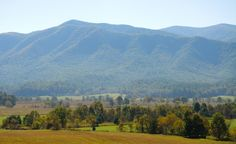 It's always a beautiful day in Cades Cove!