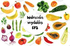 Watercolor vegetables big vector set by alexandra.dzh on @creativemarket