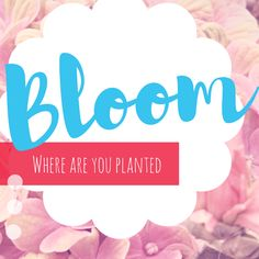 Bloom where are you planted