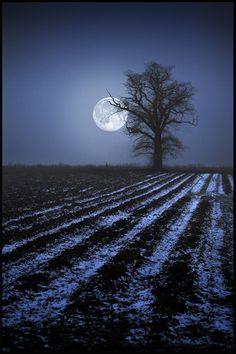 Luna con el brillo de tus ojos