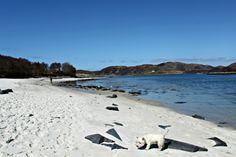 The Silver Sands of Morar, Scottish Highlands