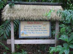 Tiger sign on the Maharajah Jungle Trek