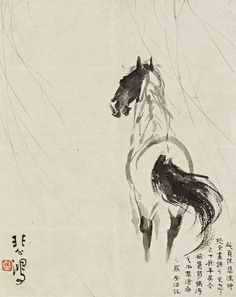 Study of a Horse by Xu Beihong Sumi E Painting, Japan Painting, Chinese Painting, Chinese Art, Chinese Zodiac, Samurai, Horse Illustration, Horse Drawings, Traditional Paintings