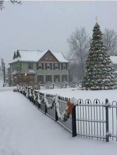 Christmas Scenes, Christmas Mood, Merry Christmas And Happy New Year, Christmas Design, Country Christmas, Simple Christmas, Scenery Pictures, Winter Pictures, Christmas Pictures