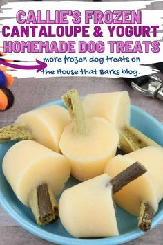 Not only do these Cantaloupe and Yogurt Pupsicles recipe make for a healthy snack, but it�s the perfect for your pups to enjoy on a hot or even a chilly day. Easy Dog Treat Recipes, Homemade Dog Treats, Dog Food Recipes, Cantaloupe And Melon, Frozen Dog Treats, Peanut Butter Dog Treats, Dog Nutrition, Yogurt, Cookie