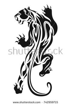 The vector image of the stolen tiger. A vector illustration. Wolf Paw Tattoos, Tribal Animal Tattoos, Tribal Animals, Gecko Tattoo, Tiger Tattoo, Lion Tattoo, Dragon Tattoo Vector, Dragon Tattoo Designs, Feather Tattoos
