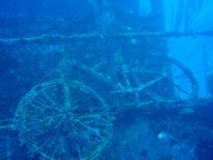 Sunken bicycle dive Utila Honduras