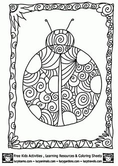 detailed ladybug coloring pagelucy learns detailed coloring pages of ladybugs - Detailed Coloring Pages