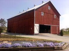Enos Miller barn - White Oak Road, Nickel Mines, PA - Southern Lancaster County - November, 2011