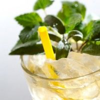 Spring Fling  Ingredients   •1 cup fresh mint leaves   •2 lemons (sliced into rounds)   •1 cucumber (sliced into rounds)   •2 cups vodka   •2 cups fresh lemon juice   •2 cups club soda