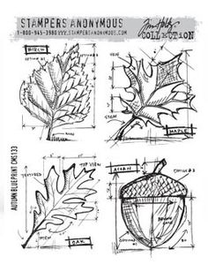 Tim Holtz Cling Stamps   cms133 Autumn Blueprint