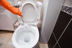 So oft musst Du Deine Toilette wirklich putzen! Nee, es macht echt keinen Spaß die Toilette zu putzen! Aber es muss ja leider sein - ...