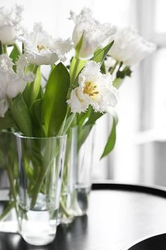 Flower arrangement with white tulips My Flower, Fresh Flowers, Beautiful Flowers, Spring Flowers, Beautiful Things, White Tulips, White Flowers, Plum Pretty Sugar, Deco Floral