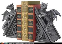 I Didn't Know Dragons Could Read