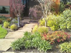 Front yard Landscaping: Stone slabs from doorstep to mailbox