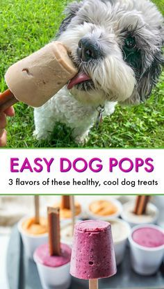 Easy Dog Pops - just a few ingredients to make these dog popsicles to keep them cool this summer! Puppy Treats, Diy Dog Treats, Homemade Dog Treats, Healthy Dog Treats, Summer Dog Treats, Pumpkin Dog Treats, Healthy Foods, Dog Biscuit Recipes, Dog Food Recipes