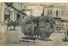 "Part of Bitola on postcard issued under the title ""World War 1914/16"""