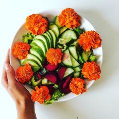 http://www.zlaticazarska.com/receptiacuteky/avokadovy-salat-s-jedlymi-kvetmi