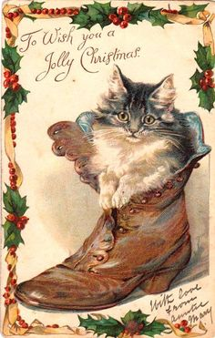 """""""To Wish you a Jolly Christmas"""" ~ Edwardian Greetings Card of Kitten in a Boot .... With Love from Auntie Mary ...."""