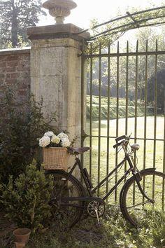 *....bike.....*