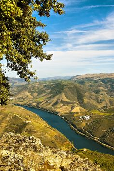 I Like It Nice And Wonderful...Always At Douro Valley In My Country Potugal !... http://samissomarspace.wordpress.com