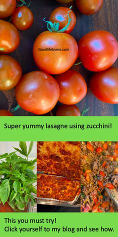 Make the best lasagne of your life! Use zucchini instead of pasta. Just perfect taste and healthy.  #zucchini #lasagne #lasagnerecipe #easylasagnerecipe #easyzucchiniresipe #deliciouslasagne #homemadelasagne #growzucchini #zucchinigarden #palramgreenhouse #cooking #homecooking #goodlifebyme #kesäkurpitsa #kesäkurpitsalasagne #lasagneresepti Home Made Lasagne, Zucchini Lasagne, Lasagne Recipes, Healthy Zucchini, What To Cook, Cherry Tomatoes, Life Is Good, Herbs, Pasta