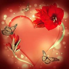 Red heart and monarchs