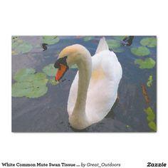 White Common Mute Swan Tissue Paper