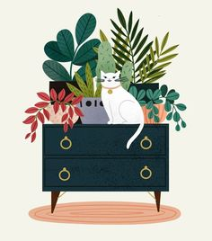 Sara Barnes / Brown Paper Bag on Plotting to slowly knock every single plant onto the floor. Happy Illustration by clarelowen . Matisse Kunst, Art And Illustration, Doodle Illustrations, Watercolor Illustration, Paper Bag Flooring, Photo Chat, Guache, Plant Art, Art Graphique