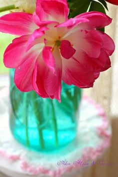 Aiken House & Gardens: Bright and Perky #pink #flowers