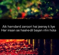 Shayari Hindi Quotes On Life, Urdu Quotes, Poetry Quotes, Urdu Poetry, Quotations, Love Quotes, Qoutes, Poetry Feelings, In My Feelings