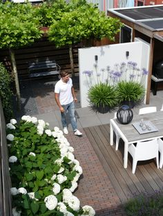Hinterhof: von Biesot Hinterhof: von Biesot The post Hinterhof: von Biesot appeared first on Terrasse ideen. Back Gardens, Small Gardens, Outdoor Gardens, Rooftop Garden, Balcony Garden, Casa Color Pastel, Dream Garden, Home And Garden, Asian Garden