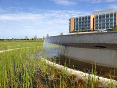 Nemours Children's Hospital - Entry water feature, utilizing storm water system for water source