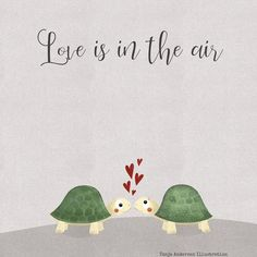 Are you thinking of buying a tortoise to keep? Tortoise pet care takes some planning if you want to be. Land Turtles, Cute Turtles, Sea Turtles, Turtle Beach, Turtle Love, Sea Turtle Pictures, Red Eared Slider, Tortoise Turtle, Snoopy Quotes