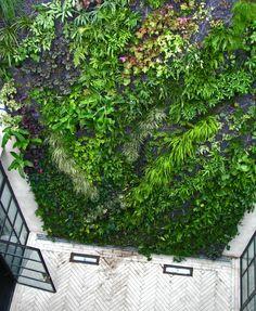 Private villa Kuait  Vertical Garden Patrick Blanc