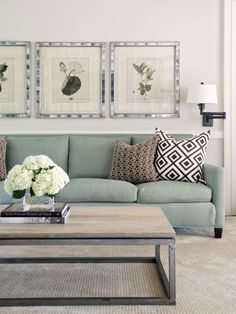 I like this couch, blue and brown are nice together    Contemporary Family Room Design, Pictures, Remodel, Decor and Ideas - page 2