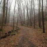 Ward Pound Ridge Reservation Trail - New York | AllTrails.com